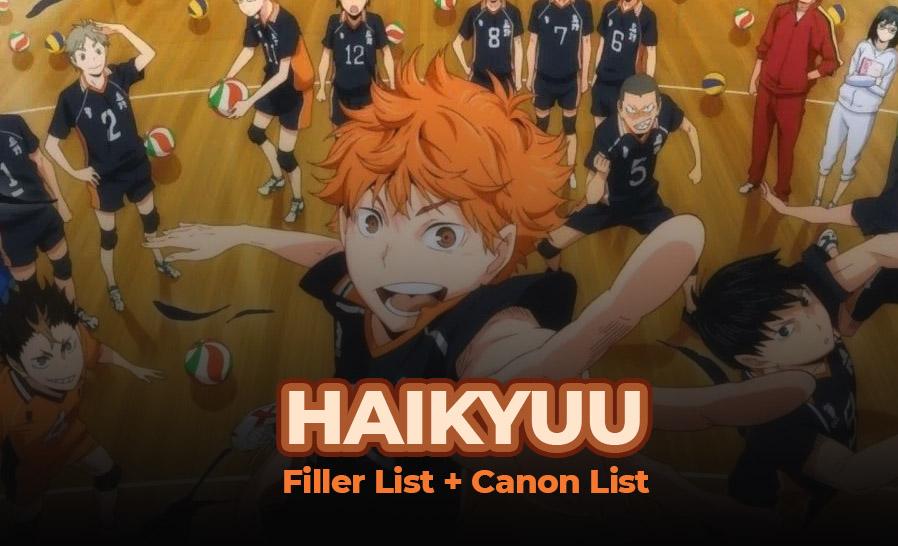 Haikyuu Filler List + Canon List